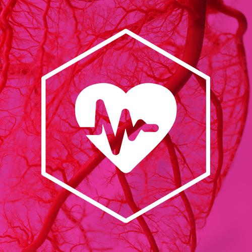 SternVitamin entwickelt Premixe zur Stärkung der Herz- und Kreislaufgesundheit.