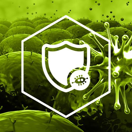 SternVitamin entwickelt Premixe zur Stärkung des Immunsystems.