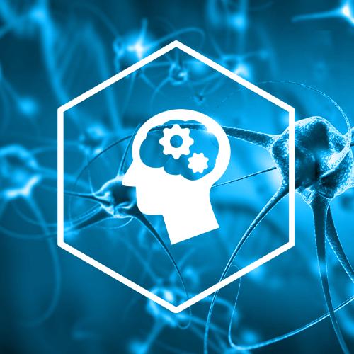 SternVitamin entwickelt Premixe zum Erhalt der Gehirnleistung.