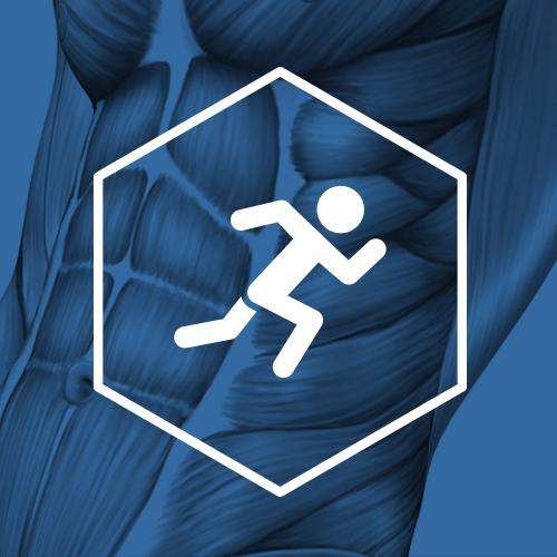 SternVitamin entwickelt Premixe zur Steigerung der Fitness.