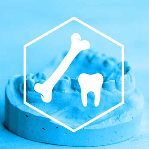SternVitamin entwickelt Premixe zum Erhalt der Zahngesundheit.