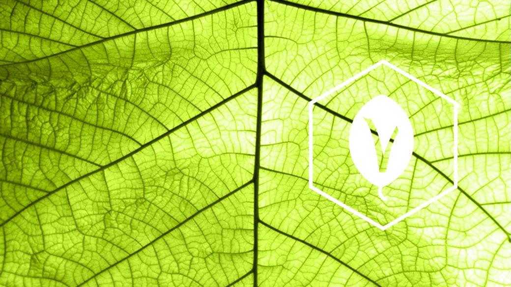 SternVitamin entwickelt Premixe fuer vegane Milchalternativen.